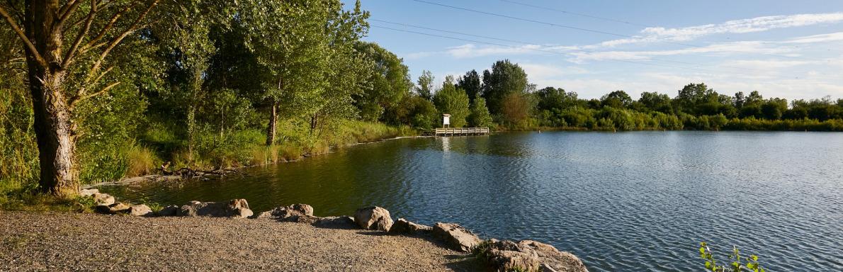 Lac de Frouzins